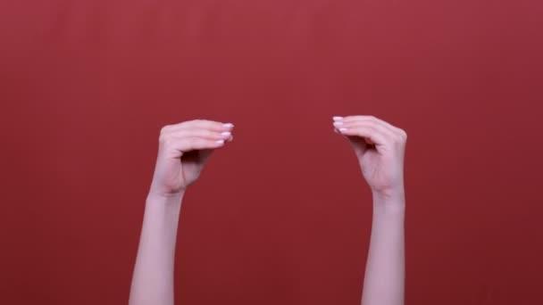 Frau zeigt, wie sie vor pastellrotem Hintergrund im Atelier vereinzelt Hände aneinander legt.