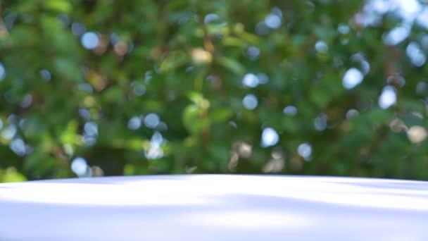 Fehér fa asztal tetején elmosódott természetes zöld lombozat bokeh a háttérben, és a természetes fény árnyék az asztalon - lehet használni a kijelző és montázs a termékek vagy élelmiszerek