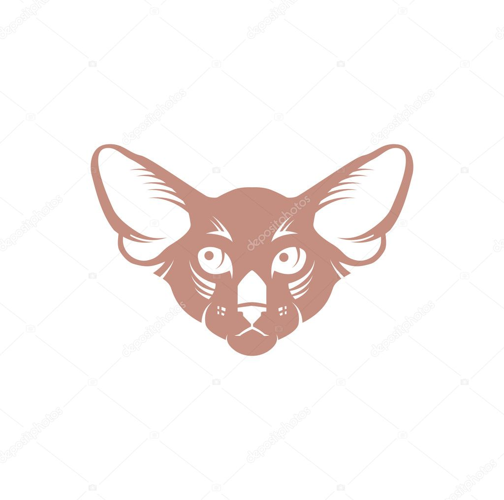 imagem vetorial de um desenho de rosto de gato no fundo branco