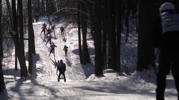 Soutěže v lyžování. Lyžaři jdou z hor v lese