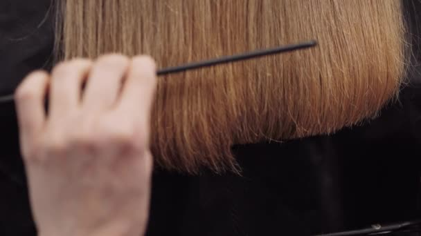 Hair salon girl haircuts. Close up 4K slow motion. Align the hair length