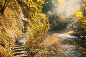Podzimní scéna ve slovenském ráji na Slovensku