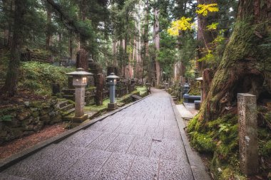 Pathway in Ancient Cemetery inside a Forest, Okunoin Cemetery, Wakayama, Japan.