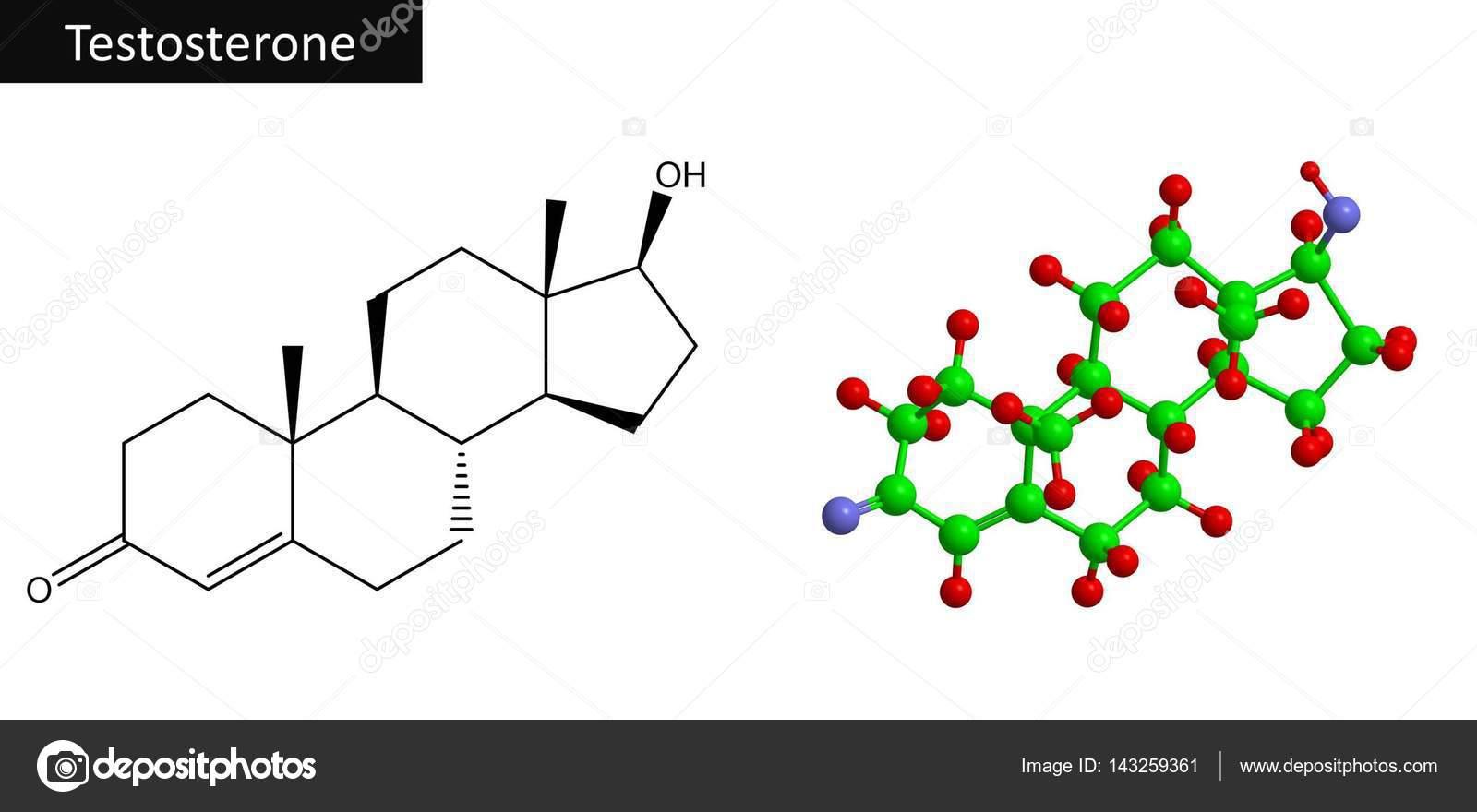 Molecular Structure Of Hormone Testosterone 3d Rendering Stock Photo C Raimund14 143259361
