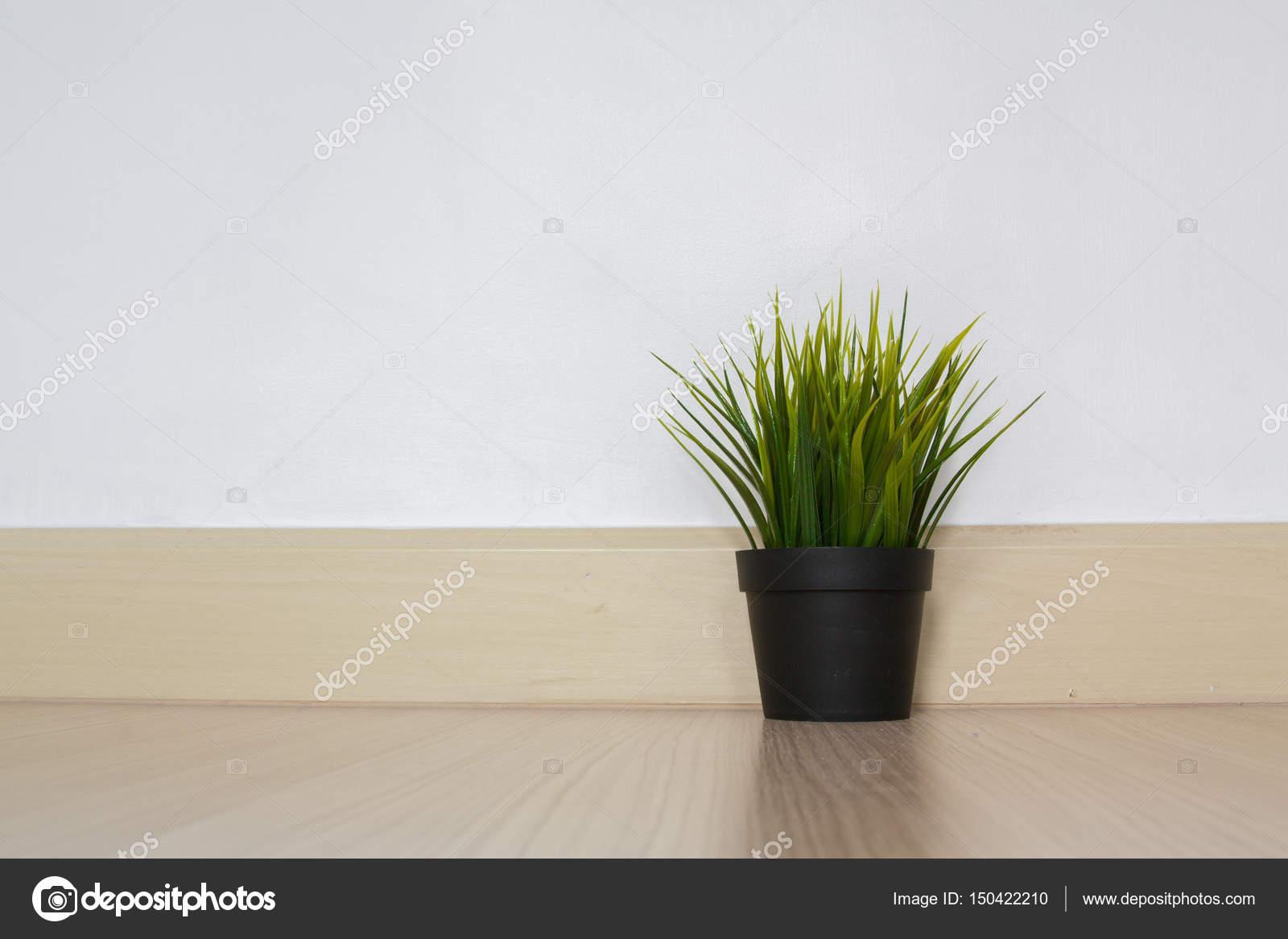 pflanze im blumentopf auf rustikalen hölzernen wand regal