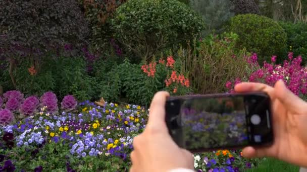 Closeup of Female Hands Taking Photo of Flowers Outside Day 4k