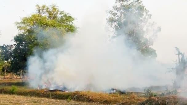 Oheň a kouř hořící v travnaté hřiště