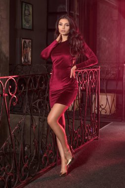 Elegant lady in fashionable mini dress.