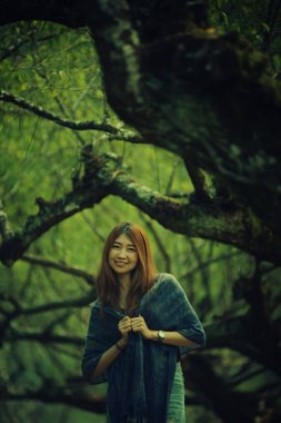 https://st3.depositphotos.com/3072055/13320/i/380/depositphotos_133205382-stock-photo-asia-beautiful-woman-on-plum.jpg