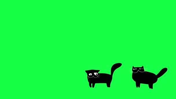 Walking cartoon black cats animation on green screen.