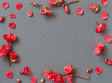 """Картина, постер, плакат, фотообои """"весенняя композиция с розовыми весенними цветами на сером фоне цветы"""", артикул 353305718"""