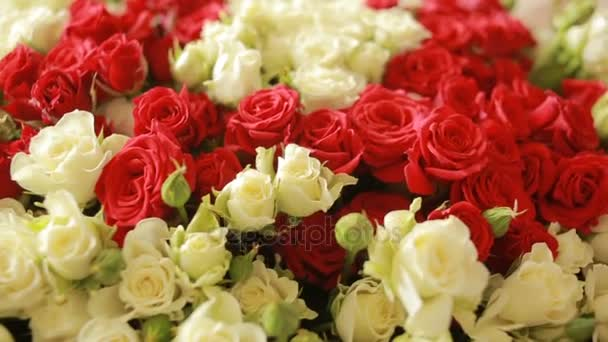 bright colorful bouquet of red and white roses, close-up