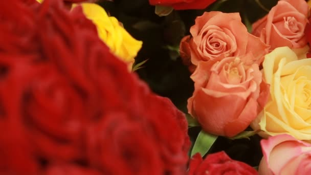 juicy, colorful bouquet of pink, yellow, red and orange roses, close-up