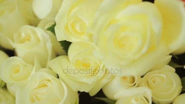 zářivě barevné kytice bílých růží, detail