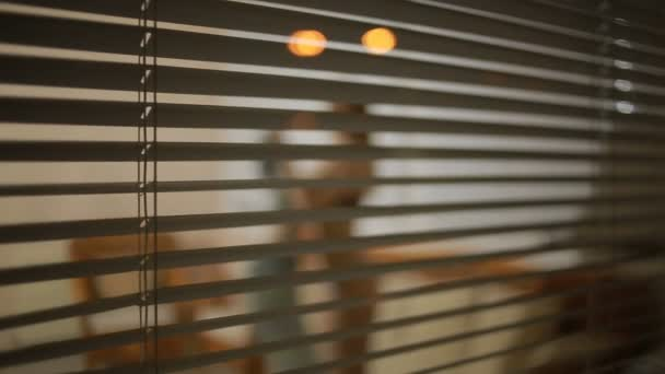 somebody spying on a girl from the street through the window blinds . crime