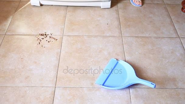 Černá kočka hodinky žena zametat podlahu.