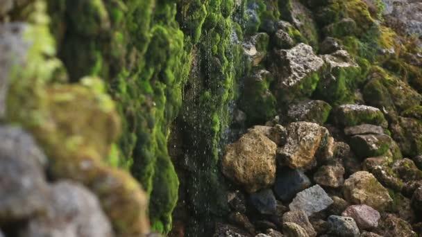 Kameny a skály pokryté mechem podél proudu vody, tryskající z vodopádu na pozadí kamenů pokrytými mechem