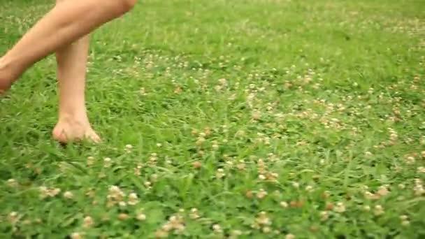 womans bare feet walking over green grass field, Flowers of clover