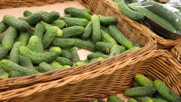 Žena v supermarketu na zeleninové police, kupuje zeleniny a ovoce. Člověk si vybere okurky. Zpomalený pohyb, 4k