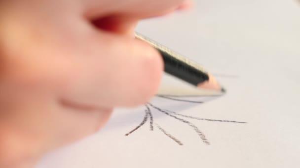 Mani Di Artisti Disegno Matita Di Legno 4 K Slow Motion Close Up