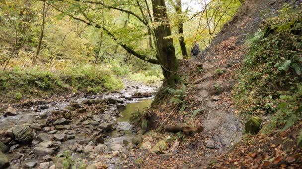 Muž Turistický batoh procházky podél břehu horské řeky v lese. 4k, pomalý pohyb