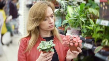 a woman choosing and shopping flowers. Woman in a supermarket. The girl in the shop. Choose plants. Buy house plants. Flower shop. 4k, background blur
