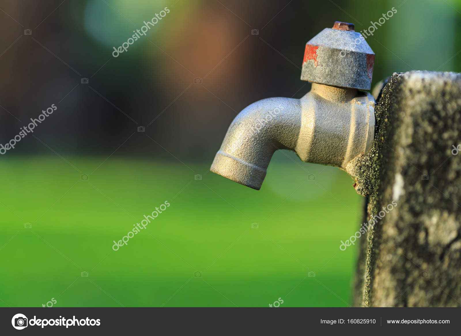 Old outdoor faucet without water in garden on green blur backgro ...