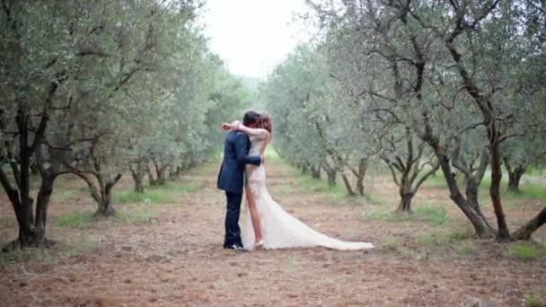 Úžasný svatební rámec mladého manželského páru zamilovaného uprostřed plantáže olivovníku, šťastní novomanželé objímající se s láskou a něhou. Svatební obřad mezi přírodou