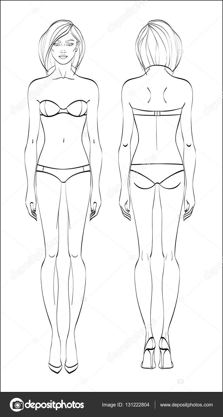 女性図 前面し 背面します ベクトル 直線的なスタイルの人体 — ストック