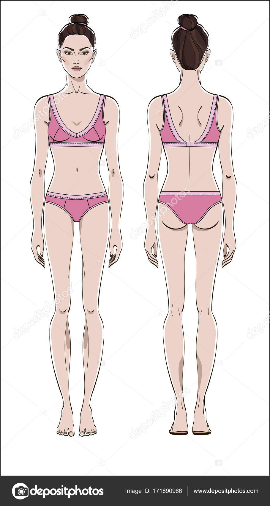 Figura Femenina Delantera Posterior Vector Color Cuerpo Humano ...