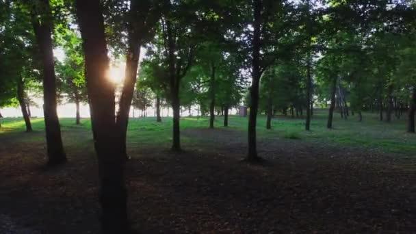 Jarní park se utopil ve stínu stromů, kde slunce svítí korunami stromů.