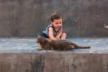 Dear little boy and a kitten