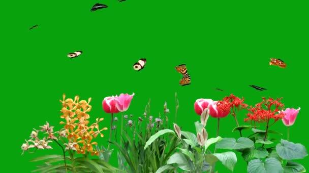 Létající motýli v zahradě se zeleným pozadí obrazovky