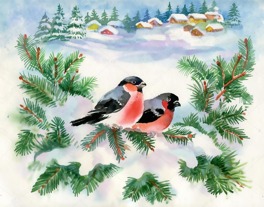 Вера, открытки снегири и рябина