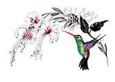 Fényképek akvarell, rajz madár