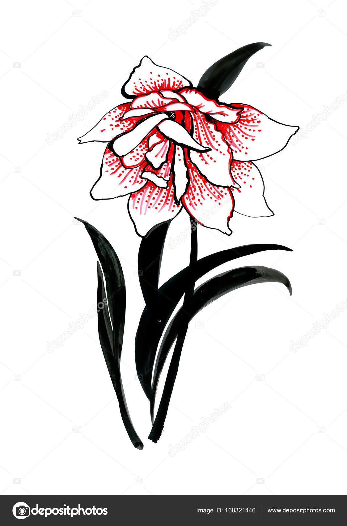 El çekilmiş Renkli çiçek Stok Foto Kostan Proff 168321446