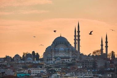 Güzel Süleymaniye Camii Istanbul, Türkiye.