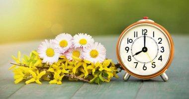 Summertime banner - fresh flowers and alarm clock