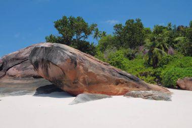 On tropical island. Baie Lazare, Mahe, Seychelles