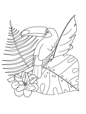 Toucan on a branch in the jungle. Coloring book