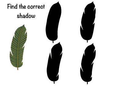 Find the correct shadow. Logical childrens game