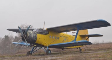 An-2 aircraft, the largest biplane in the world, the famous, best-in-class aircraft, a bit worn out, but still in good flight condition. A picture against the background of a field and forest.