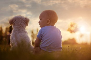 Baby boy and his dog enjoying in nature