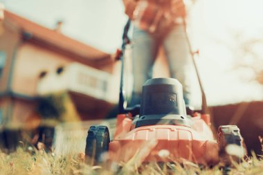 Lawn mower,close up