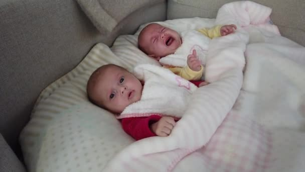 Two girls sisters lie on the bed. Two baby twins on the bed, one crying.