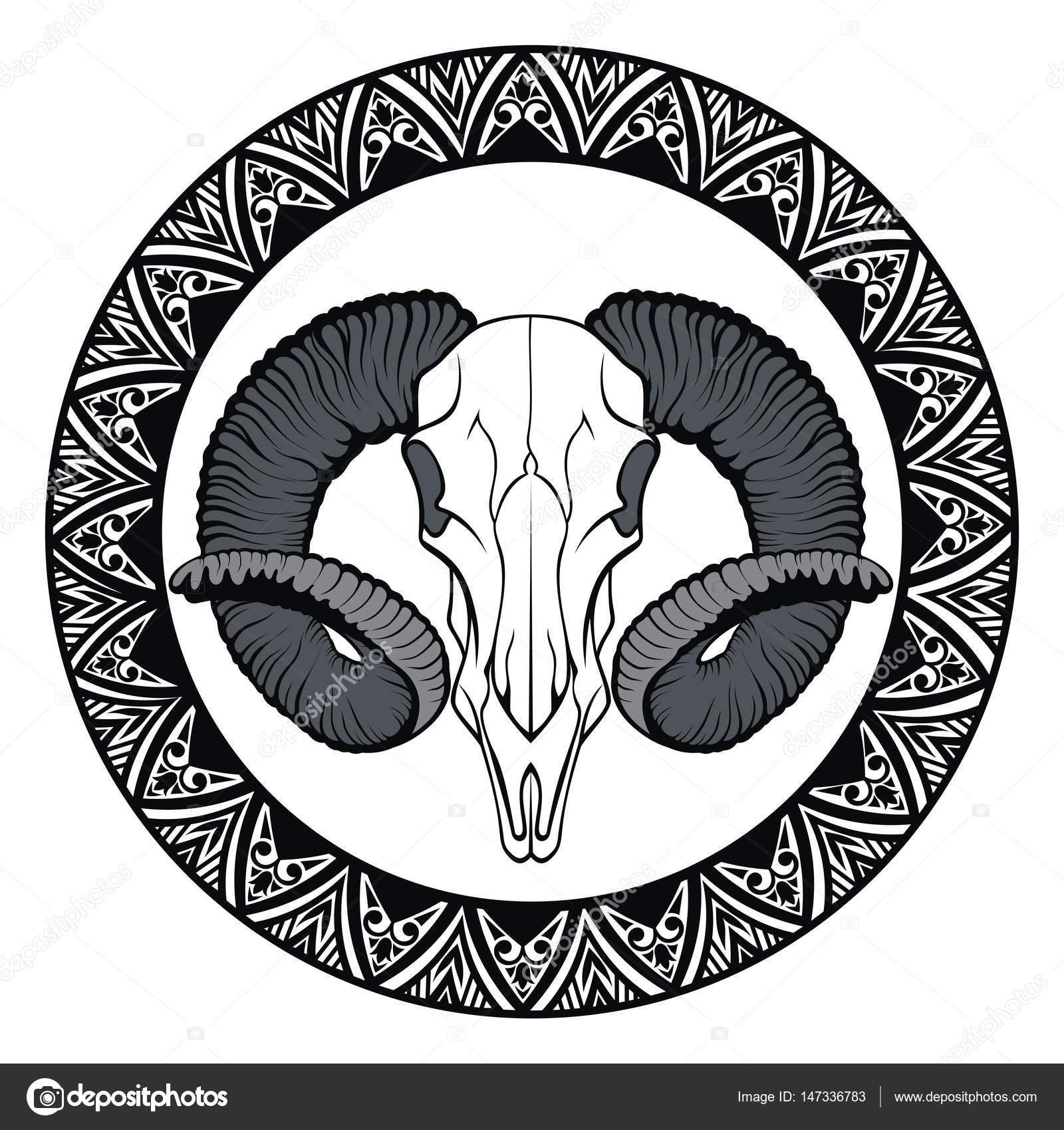 Cráneo de animal en el marco — Archivo Imágenes Vectoriales ...