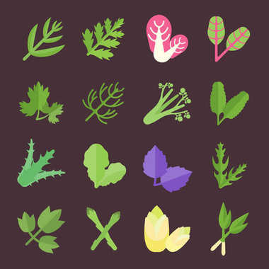 Set Vector Flat Icons of Greenery