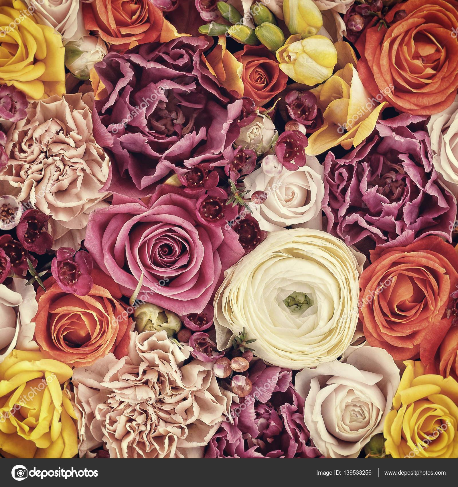 Fondos De Flores Reales De Colores Fondo De Flores Capullos De