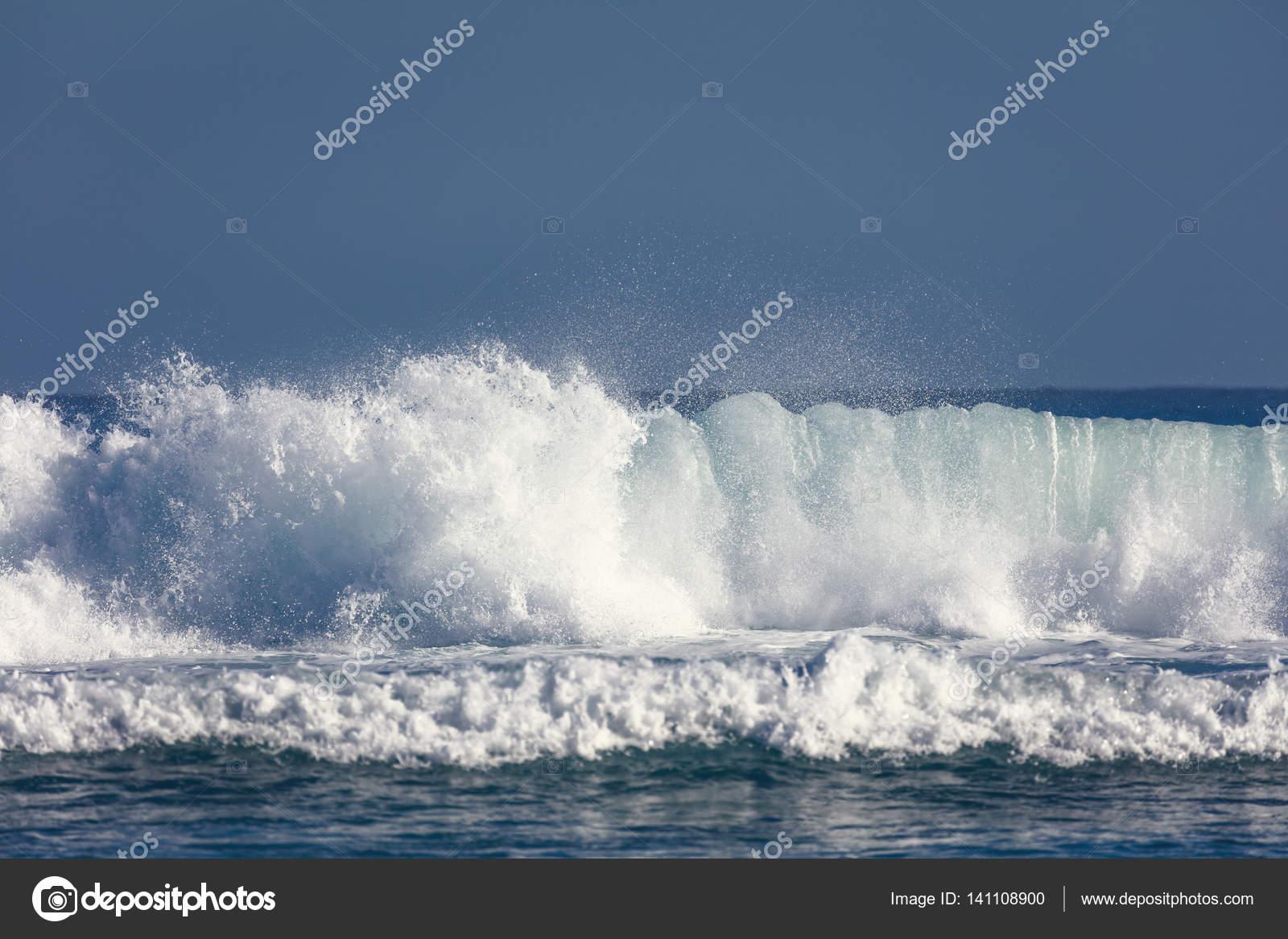 Onde dell 39 oceano atlantico foto stock baranov evgenii - Foto di animali dell oceano ...