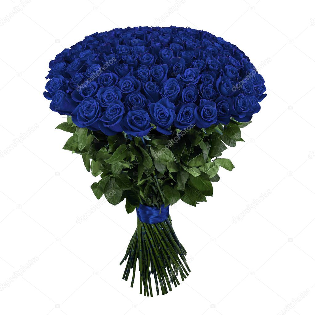 Beautiful blue rose. Isolated large bouquet of 101 rose on white